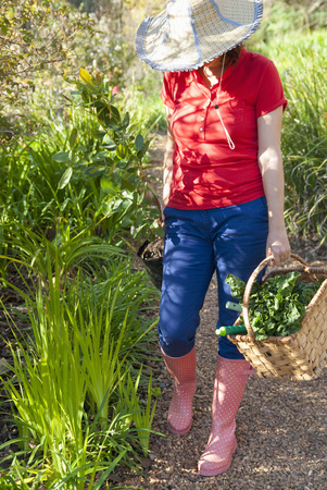 Woman carrying vegetables and plant LANG_EVOIMAGES