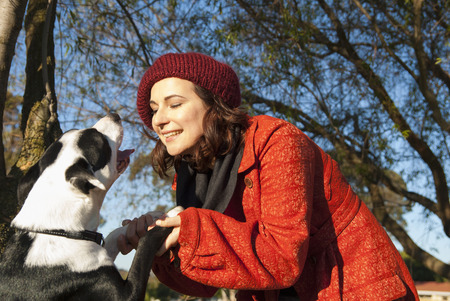 womens hands: Woman shaking dogs paws outdoors