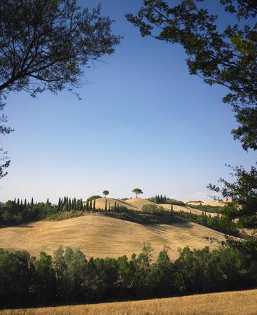 Trees arching over rural landscape LANG_EVOIMAGES