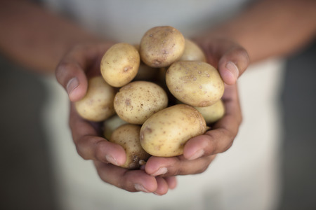 Close up of hands holding potatoes LANG_EVOIMAGES