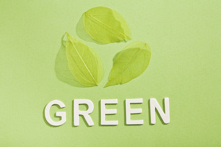environmentalism: Paper cut out of Green with leaves LANG_EVOIMAGES