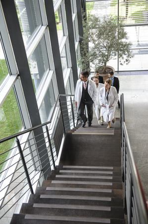 ascends: Doctors climbing staircase in office
