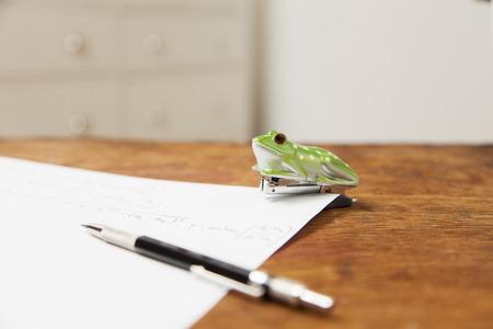 formulae: Frog shaped stapler and pen on paper LANG_EVOIMAGES