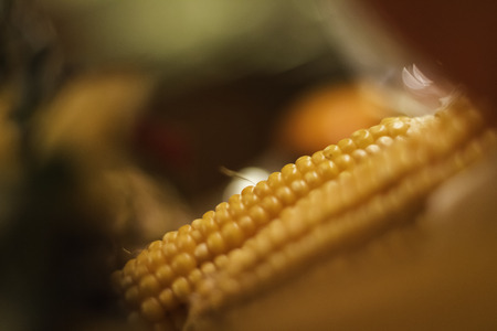 Close up of ears of corn