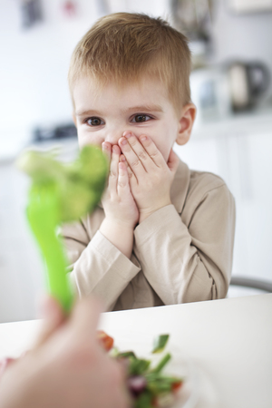 Boy gasping at vegetable at table LANG_EVOIMAGES