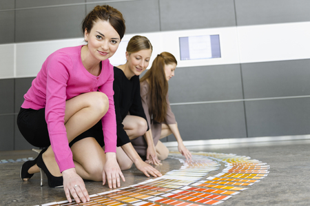consulted: Businesswomen examining paint swatches