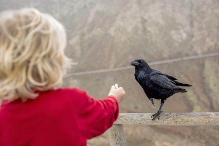 egglayer: Boy feeding crow on fence LANG_EVOIMAGES