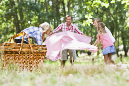 Family having picnic in park LANG_EVOIMAGES