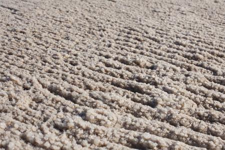 close up food: Salt crystals on shore of Dead Sea,Israel LANG_EVOIMAGES