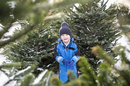 decide deciding: Boy standing in Christmas tree lot