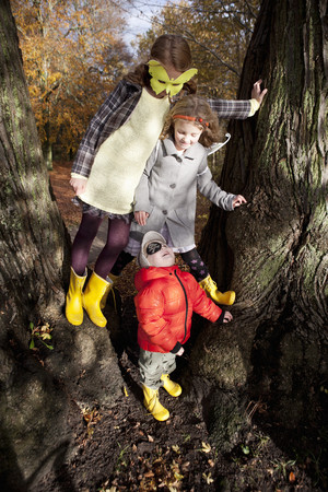 Children playing together in tree
