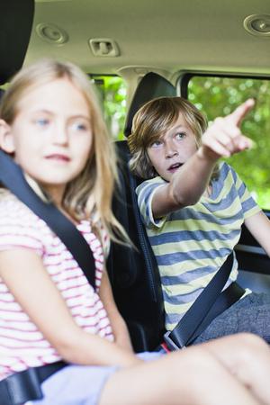 preadolescent: Children sitting in backseat of car