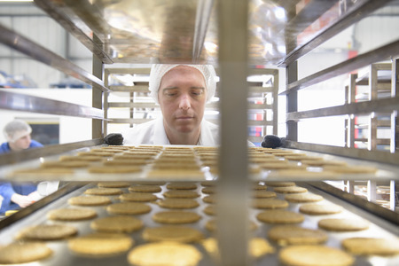 large group of business people: Worker examining biscuits in factory