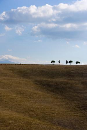 aligned: Bare fields with cypress trees on horizon,Tuscany,Italy
