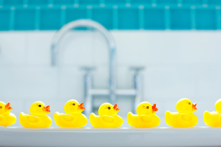 Row of three yellow rubber ducks for bathtime LANG_EVOIMAGES
