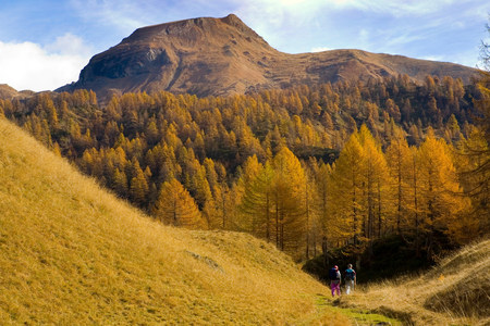 pastoral scenery: Mature couple hiking in valley of Alp Devero,Alpi,Piedmont,Italy LANG_EVOIMAGES