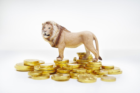safeguarded: Toy lion on stacks of gold coins LANG_EVOIMAGES