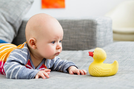 Baby boy staring at rubber duck