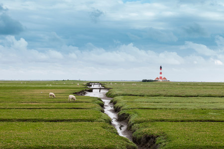 Field with distant lighthouse,Schleswig Holstein,Germany Stock Photo - 82212856