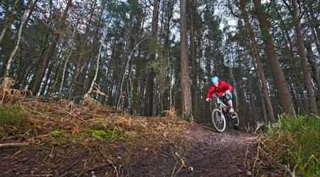 low self esteem: Mid adult man on mountain bike in forest LANG_EVOIMAGES