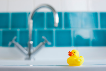 bathtime: One yellow rubber duck for bathtime LANG_EVOIMAGES