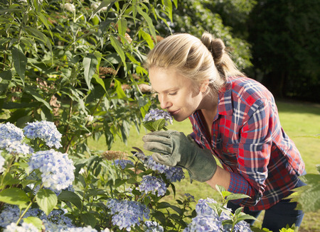 admired: Woman smelling flowers in garden