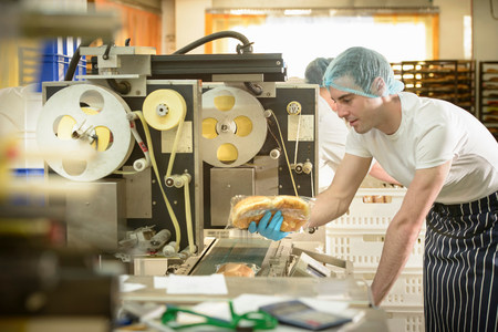 check ups: Baker inspecting packaging on bread rolls production line bakery LANG_EVOIMAGES