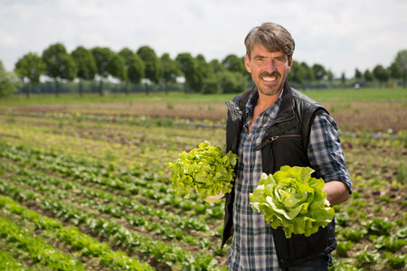 Portrait of organic farmer holding lettuce LANG_EVOIMAGES