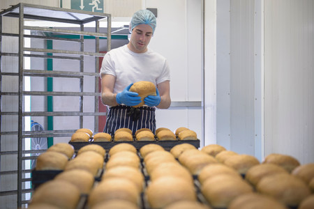 Baker inspecting loaf from tray of freshly baked bread LANG_EVOIMAGES