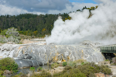 sultry: Pohutu Geyser and Prince of Wales Geyser,Te Puia,Rotorua,New Zealand