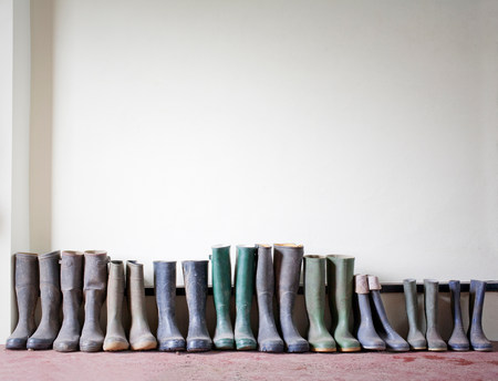 welly: Rubber boots in a row