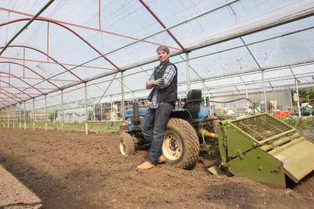 gloved: Portrait of organic farmer with tractor in polytunnel