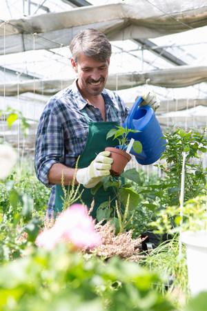 farmyards: Organic farmer watering young plants