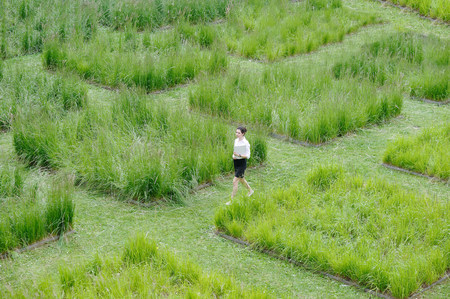 Young office worker strolling through grass maze
