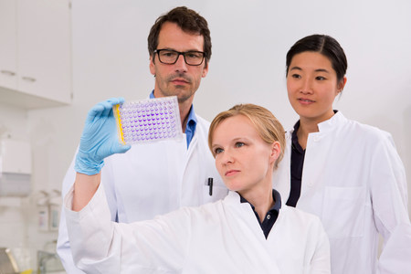 Group of scientists analyzing microtiter plate with crystal violet solution