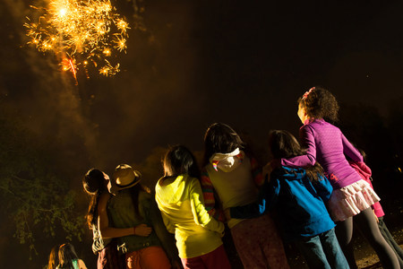 preadolescent: Group of people watching firework display LANG_EVOIMAGES