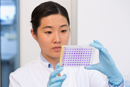 Female scientist examining samples in microtiter plate with crystal violet solution LANG_EVOIMAGES