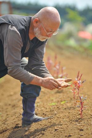 65 69 years: Farmer inspecting soil LANG_EVOIMAGES