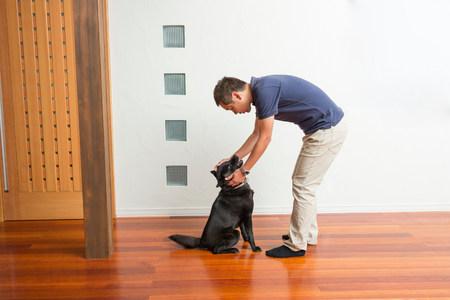 Man stroking his pet dog