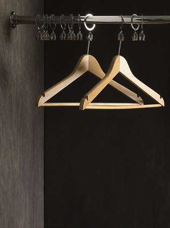 coathangers: Clothes hangers in closet LANG_EVOIMAGES