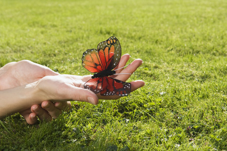 frailty: Person holding butterfly LANG_EVOIMAGES