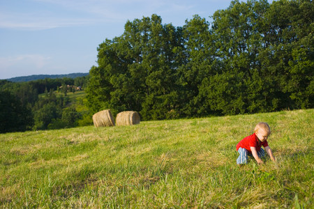 farmyards: A baby boy crouching in a field LANG_EVOIMAGES