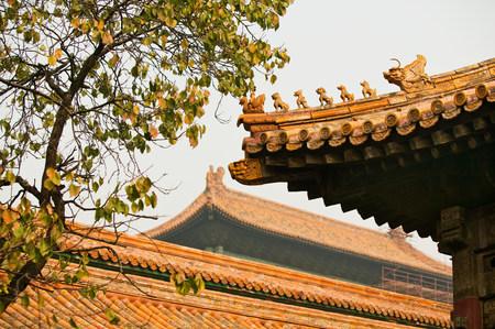 Roofs in forbidden city beijing LANG_EVOIMAGES