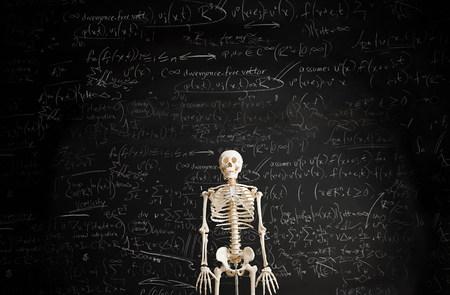 Skeleton in front of blackboard LANG_EVOIMAGES
