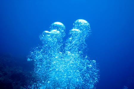 see through: Air bubbles from diver.