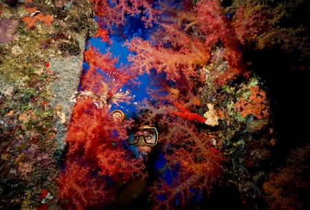 scorpionfish: Scuba diver on shipwreck.