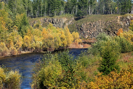 River and trees in siberia