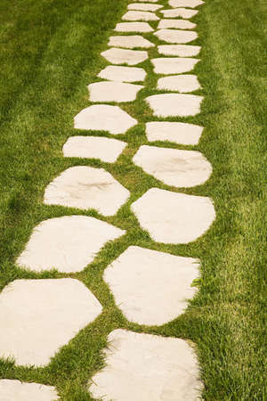stepping: Stepping stone path