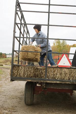 farmyards: Farmer and tractor of hay