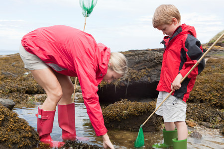 Mother and son looking in rock pool LANG_EVOIMAGES